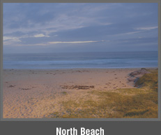 North Beach - Absolute Beachfront Real Estate